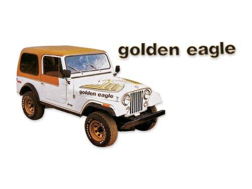 Truck Honcho 1977 1978 1979 1980 Jeep Golden Eagle CJ5 CJ7 Decals & Stripes Kit - GOLD