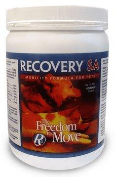 Recovery SA Powder – 2.2 lb, My Pet Supplies