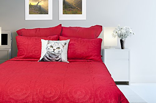 Queen Mandalay (Gouchee Home Mandalay Quilt Set, Queen, Red)