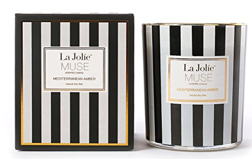 LA JOLIE MUSE Scented Candles Amber Soy Wax Aromatherapy Jar Candle 10 OZ, Gift Candles Amber Scented Candle