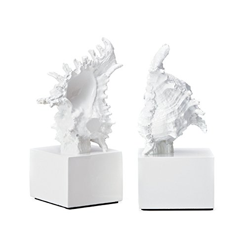 Torre & Tagus 901612 Murex White Shell Bookends, Set of 2