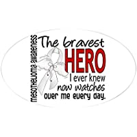 CafePress - Bravest Hero I Knew Mesothelioma - Oval Bumper Sticker, Euro Oval Car Decal