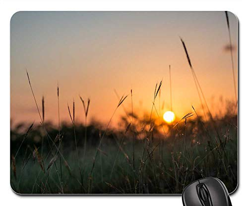 - Mouse Pads - Sunset Dawn Sun Field Lawn Silhouette Environment