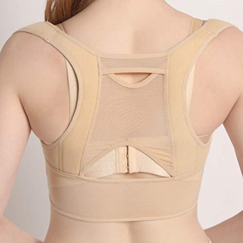 シャットキャベツ提唱する通気性のある女性の背中の姿勢矯正コルセット整形外科の肩の背骨の姿勢矯正腰椎サポート - ベージュホワイトM