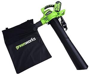 Greenworks Tools 24227 40 V Laubgebläse und Sauger (ohne Akku und Lader)
