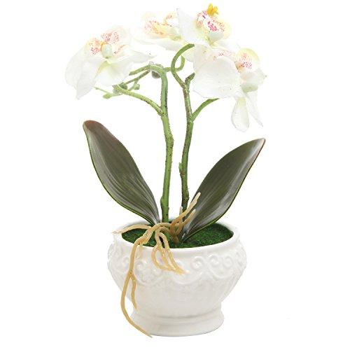 Artificial Silk Phalaenopsis Orchid Flower Arrangement w/ Vintage White Vase, White