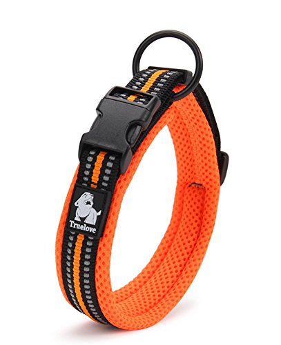 Coupling Safety (PENTAQ Breathable Strong Nylon Mesh Dog Collar With Night Safety Reflective Stripe, Comfortable Adjustable Padded Collar For Small/Medium/Large Dog, Orange (XS (30-35cm)))