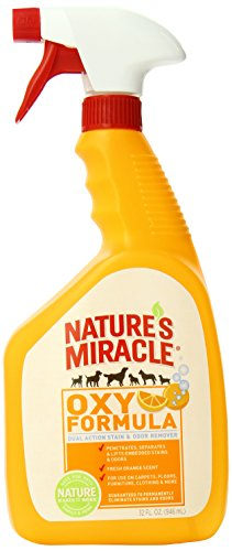 natures-miracle-stain-odor-remover-orange-oxy-trigger-spray-32oz-p-5749