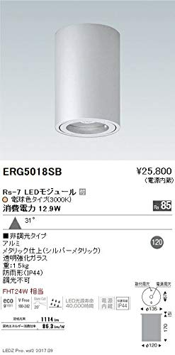ENDO LED軒下用シーリングダウンライト 防雨形 電球色3000K 広角 非調光 FHT24W相当 ERG5018SB(ランプ付) B07HQ9B323