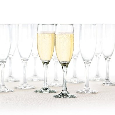 Dailyware Toasting Flutes (Set of 36), Elegant Style Glasses, Perfect for Special Occassions