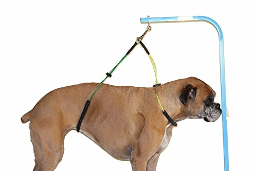No Sit Haunch Holder Dog Grooming Harness Leash Loop For