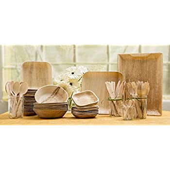 Leafware Party Pack - Natural Palm Leaf Dinnerware Set  sc 1 st  Amazon.com & Amazon.com | Leafware Party Pack - Natural Palm Leaf Dinnerware Set ...