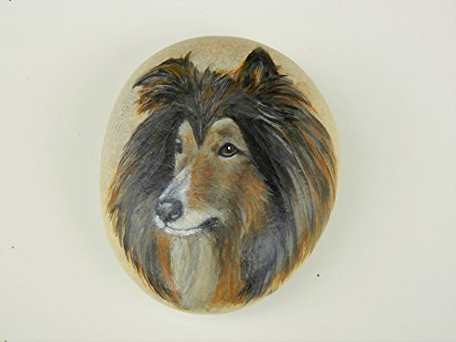 Rough Collie Dog Handpainted on a Spanish Beach Rock