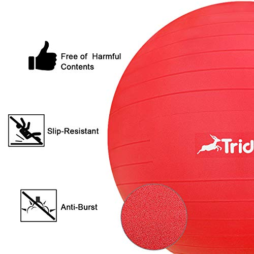 Trideer Ball Chair – Exercise Stability Yoga Ball with Base for Home and Office Desk, Ball Seat, Flexible Seating with Ring & Pump, Improves Balance, Back Pain, Core Strength & Posture by Trideer (Image #3)