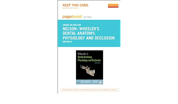 Wheeler\'s Dental Anatomy, Physiology and Occlusion - Elsevier eBook ...