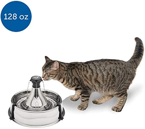 PetSafe Stainless Steel Cat and Dog Water Fountain – Seaside 60 oz or 360 Multi-Pet 128 oz Drinking Fountain