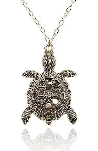 Amazon turtle charm silver tone aromatherapy necklace essential turtle charm silver tone aromatherapy necklace essential oil diffuser locket pendant jewelry diffuser cover w aloadofball Images