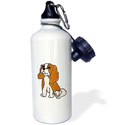 Water Spaniel Dog Art (3dRose wb_200086_1