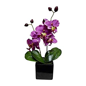 MARJON FlowersPink Orchid Artificial Potted Plant 34cm Tall with Silk Flowers in a Ceramic Square Black Planter Pot - House Office or Indoor Use - Stunning Houseplant 96
