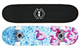 Amrgot Skateboards Pro 31 inches Complete Skateboards for Teens, Beginners, Girls,Boys,Kids,Adults (10)