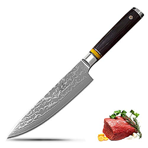 (Professional Chef Knife 8 inch Kitchen Knife 67 Layers Damascus Steel Santoku Knives, Comfortable Touch, Sharp Blade Easy to Work by Xing YI)