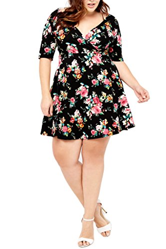 Women's Floral Flowers Prints Fit and Flare V Neck Wrap Short Sleeves Dress Plus USA BKFL 1XL (Flare Wrap Print)