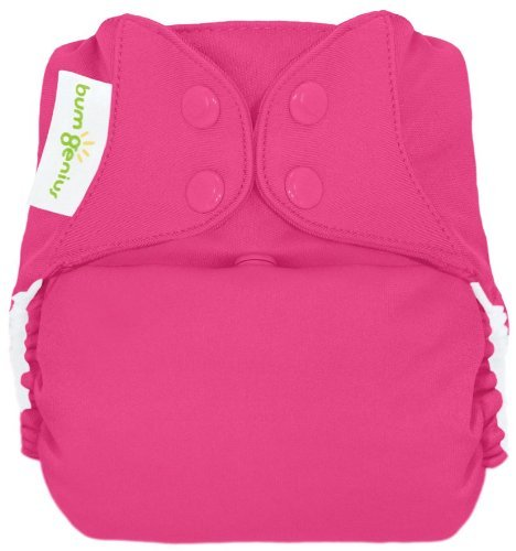 (bumGenius Freetime All-In-One One-Size Snap Closure Cloth Diaper (Countess))