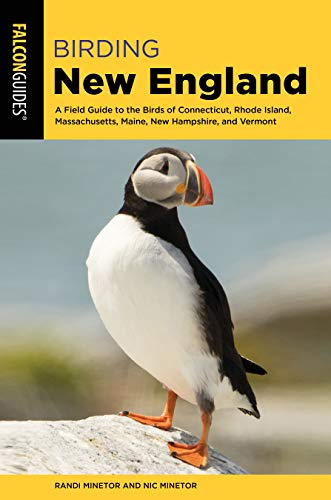 Birding New England: A Field Guide to the Birds of Connecticut, Rhode Island, Massachusetts, Maine, New Hampshire, and Vermont (Birding Series) (Birds New England)