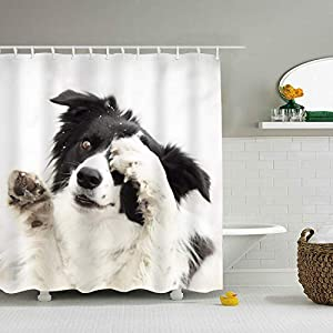 RianGo Border Collie Shower Curtain - Machine Washable - Shower Hooks are Included 1