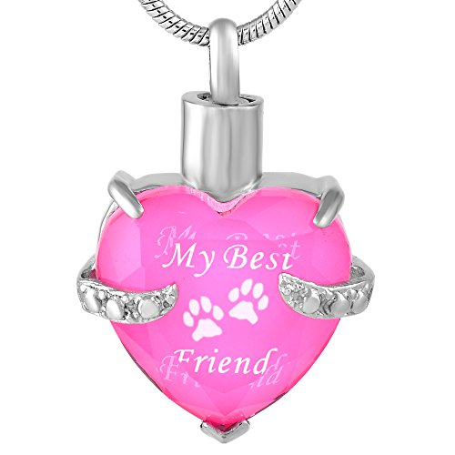 My Best Friend Glass &Stainless Steel Cremation Pendant Ashes Keepsake Memorial Urn Necklace (Pink and White)