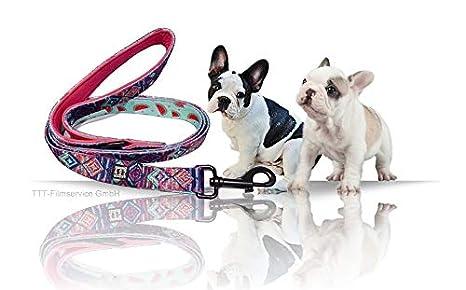 Frenchy and Friends Perros Cuerda | Cuerda para | Flexible Cuerda ...