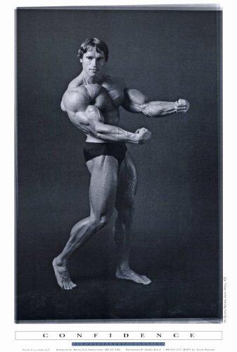 Pop Culture Graphics Arnold Schwarzenegger Poster Movie 27x40