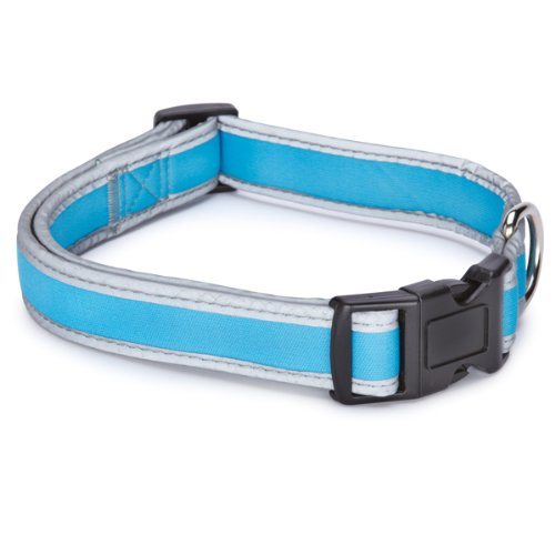 Casual Canine Nylon Reflective Neoprene Dog Collar, 6 to 10-Inch, Bluebird