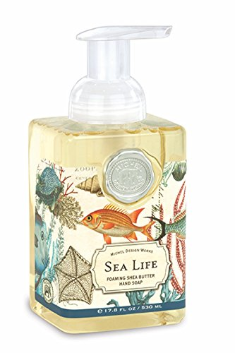 Amazoncom Michel Design Works Foaming Hand Soap 178 Ounce Sea