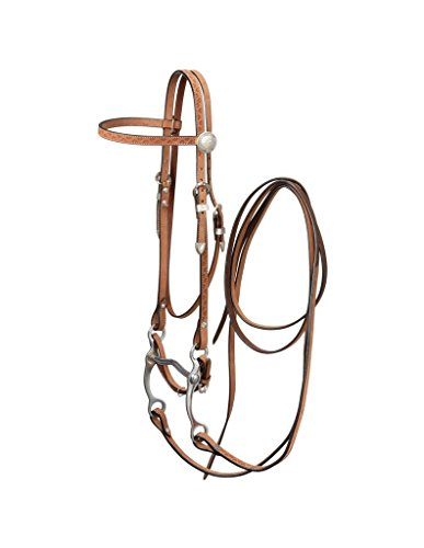 Silver Royal Brow Horse Bridle