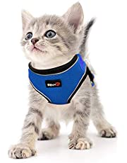 SENYEPETS Breathable Mesh Cat Harness and Leash,Adjustable Soft Kitten Walking Harness No Pull Design with Durable D Ring,Escape Proof Cat Harnesses (L, Blue)