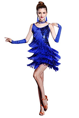 [Honeystore Women's Tassle 1920s Sequin Flapper Dress Fringe Latin Dance Costume Royal Blue S] (Cute Costumes For Dance)
