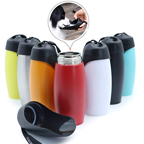 Vivaglory Stainless Steel portable water bottle