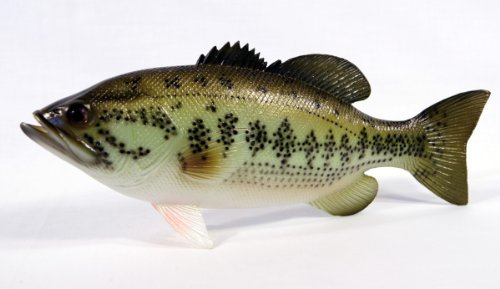 Handpainted Large Mouth Bass Statue Game Fish Replica 18