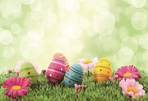 Leyiyi 6x4ft photography Background Happy Easter Day Backdro