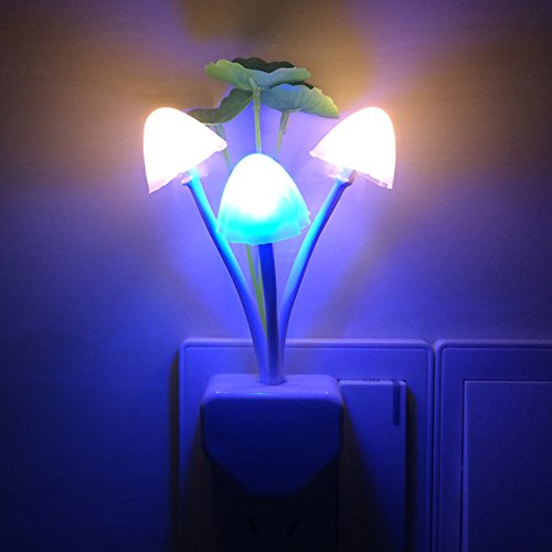 Enchanted Forest Led Lights