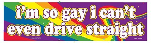 I'm So Gay I Can't Even Drive Straight - Flexible Car Auto Bumper Magnet - Hilarious! ()