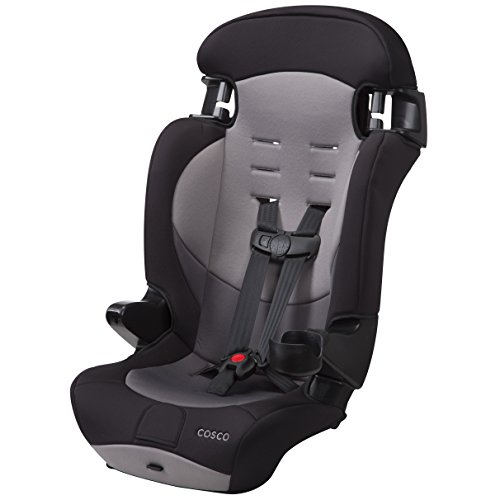 Cosco Finale DX 2-in-1 Combination Booster Car Seat (Dusk) (Convertible Car Seat Cosco)