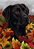 Black Labrador Retriever Dog Tamara Burnett Fall Leaves Garden Dog Breed Flag 28'' x 40''