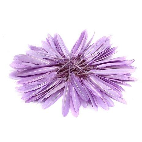 CreazyDog (TM) 100 pcs 4-6 inch / 10-15 cm WH Beautiful Pheasant Neck Feathers (Light Purple)