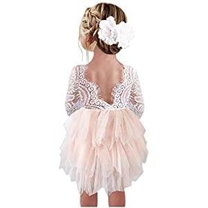 Best Epic Trends 41IbZpV3TrL._SS300_ 2Bunnies Girl Peony Lace Back A-Line Tiered Tutu Tulle Flower Girl Dress