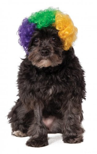 Rubie's Mardi Gras Afro Pet Wig, Medium/Large, Multicolor