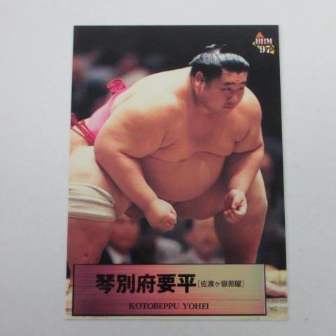 BBM1997大相撲カード■レギュラーカード■065/琴別府