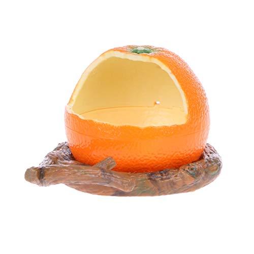Fruit Shape Bowl Bird Feeder Drinker Water Food Dispenser Container Pet Supplies-1