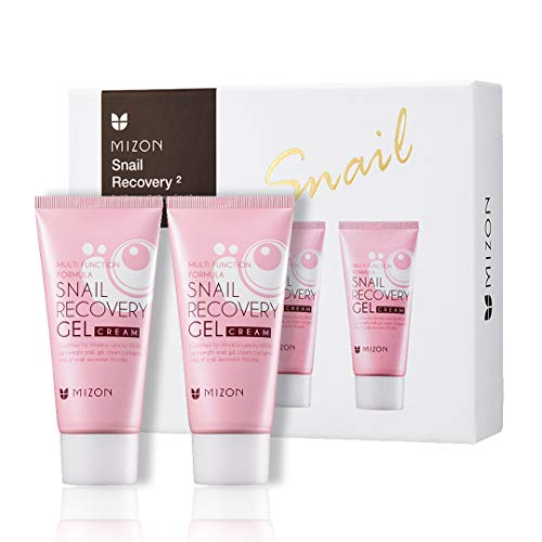 Mizon Snail Recovery Gel Cream by Power of Two, Set of Two Snail Recovery Gel Cream for Wrinkle Care Skin Elasticity and Moisture, Fragrance Free, Paraben Free (45ml 1.52 fl.oz) - 2 pcs